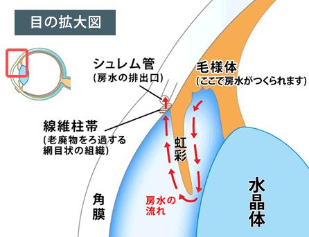 房水と眼圧について/緑内障/図