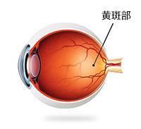 糖尿病性视网膜症
