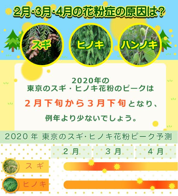 2020年の東京のスギ・ヒノキ花粉シーズン
